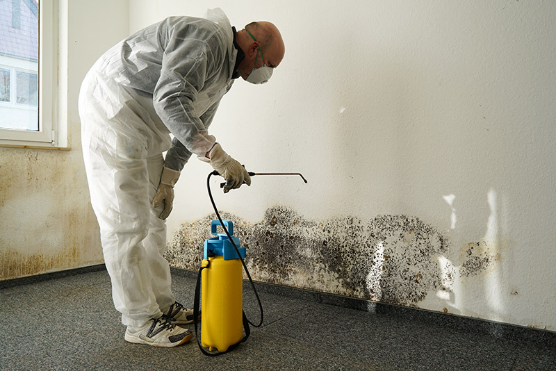 man cleaning mold