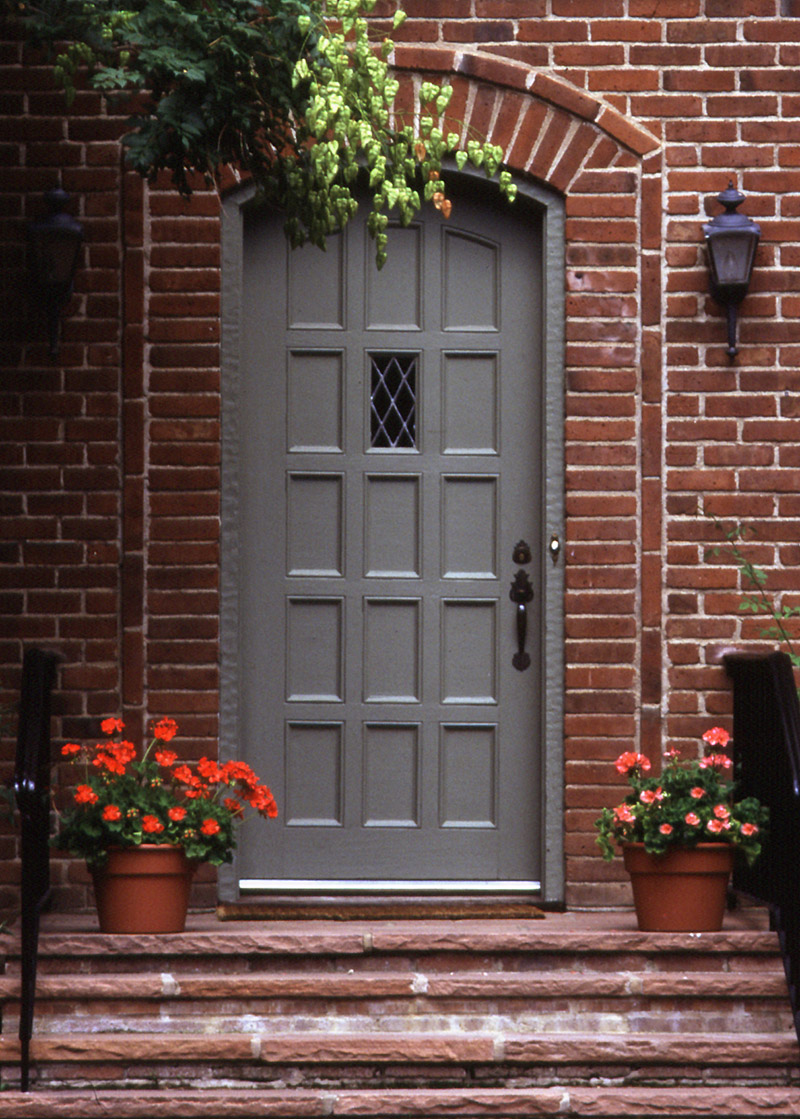 potted plants by a door