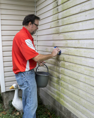 Stop Mold On Vinyl Siding From Forming