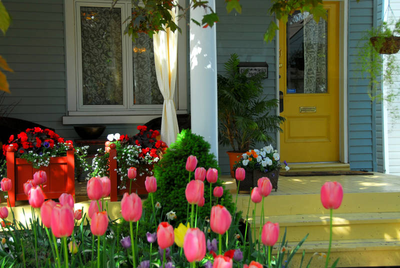 flowers by a front porch